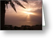Palmtrees Mixed Media Greeting Cards - An Omani sunset Greeting Card by Sunaina Serna Ahluwalia