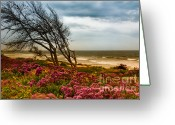 Storm Prints Photo Greeting Cards - An unsettled Seaside storm  Greeting Card by Robert Sawin