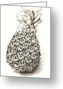 Roswitha Schmuecker Greeting Cards - Ananas No.1 Greeting Card by Roswitha Schmuecker