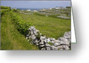 Barren Limestone Greeting Cards - Ancient Limestone Fields Greeting Card by Bob Gibbons