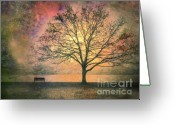 Bench Greeting Cards - And the Morning is Perfect in all Her Measured Wrinkles Greeting Card by Tara Turner