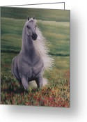 White White Horse Pastels Greeting Cards - Andalusian Spirit Greeting Card by Louise Green