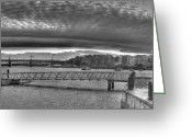 Suburbs Greeting Cards - Anderson Park Ferry Wharf in Black and White Greeting Card by Josephine Caruana