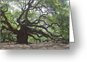 Angel Oak Tree Greeting Cards - Angel Oak II Greeting Card by Suzanne Gaff