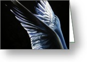 Most Greeting Cards - Angel Wings Greeting Card by Sun Cruise