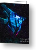 Saltwater Fish Greeting Cards - Angelfish Greeting Card by Wingsdomain Art and Photography