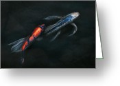 Kingyo Greeting Cards - Animal - Fish - Beauty and Grace  Greeting Card by Mike Savad