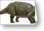 Dinosaurs Greeting Cards - Ankylosaurus Magniventris Greeting Card by Sergey Krasovskiy