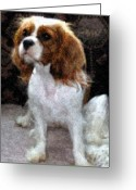 Spaniel Print Greeting Cards - Annie Greeting Card by Julie Niemela