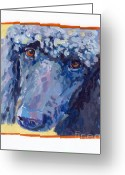 Poodle Greeting Cards - Annie Greeting Card by Kimberly Santini