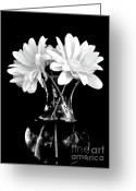Clear Glass Greeting Cards - Anniversary Forty Four Greeting Card by Marsha Heiken