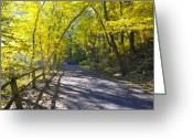 Fairmount Park Greeting Cards - Another Fall in Philadelphia Greeting Card by Bill Cannon