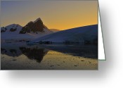 Austral Greeting Cards - Antarctic Sunrise Greeting Card by Tony Beck