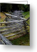 Split-rail Fence Greeting Cards - Antietam Fenceline Greeting Card by Judi Quelland