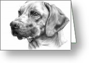Pet Portrait Drawings Greeting Cards - Anton Greeting Card by Sheona Hamilton-Grant