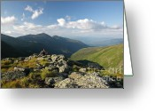 Ecosystem Greeting Cards - Appalachian Trail  - White Mountains New Hampshire Greeting Card by Erin Paul Donovan