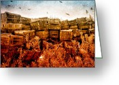 Photography Greeting Cards - Apple Crates and Crows Greeting Card by Bob Orsillo