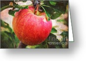 Summer On The Farm Greeting Cards - Apple On The Tree Greeting Card by Andee Photography