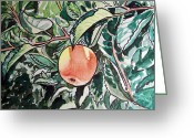Sketchbook Greeting Cards - Apple Tree Sketchbook Project Down My Street Greeting Card by Irina Sztukowski