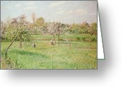 Orchards Greeting Cards - Apple Trees at Gragny Greeting Card by Camille Pissarro