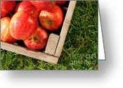 Selection Greeting Cards - Apples in a crate on grass Greeting Card by Richard Thomas