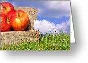 Selection Greeting Cards - Apples in a crate on grass with blue cloudy sky Greeting Card by Richard Thomas