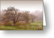 Head Greeting Cards - Apples trees in the mist Greeting Card by Sandra Cunningham