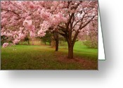 Shade Greeting Cards - Approach Me - Holmdel Park Greeting Card by Angie McKenzie