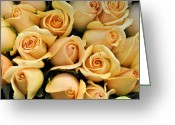 Roses Petals Greeting Cards - Apricot Kisses Greeting Card by Jan Amiss Photography