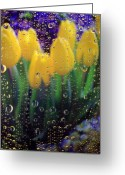 Cheery Greeting Cards - April Showers Greeting Card by Linda Mishler