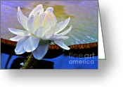 Aquatic Flower Greeting Cards - Aquatic Beauty in White Greeting Card by Julie Palencia