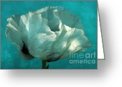 Flower Blossom Greeting Cards - Aquatic Greeting Card by Iris Lehnhardt