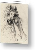 Wild Horse Drawings Greeting Cards - Arabian Horse Drawing 37 Greeting Card by Angel  Tarantella
