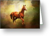 Running Horse Greeting Cards - Arabian Horse Greeting Card by Jai Johnson