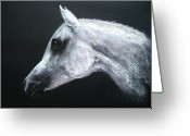 White White Horse Pastels Greeting Cards - Arabian King Greeting Card by Sabina Haas
