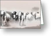 Arabian Photographs Greeting Cards - Arabian mares - home run  Greeting Card by El Luwanaya Arabians