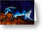 White White Horse Digital Art Greeting Cards - Arabian stallion Greeting Card by El Luwanaya Arabians