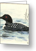 Wildlife Art Ceramics Greeting Cards - Arctic loon Greeting Card by Dy Witt