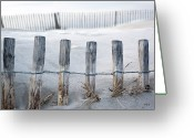 Fence Row Greeting Cards - Aresquiers Beach Greeting Card by Anne Petitfils