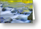 Blue Green Water Greeting Cards - Argen River Greeting Card by Silke Magino