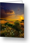 Natural Light Greeting Cards - Aridity Greeting Card by Phil Koch