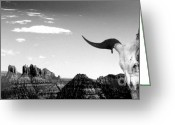 Desert Greeting Cards - Arizona Greeting Card by Ben and Raisa Gertsberg