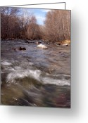 Winter Trees Greeting Cards - Arizona Creek Greeting Card by Scott Sawyer