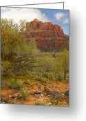 Red Rocks Greeting Cards - Arizona Outback 3 Greeting Card by Mike McGlothlen