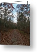Autumn Roads Greeting Cards - Around The Bend Greeting Card by Neal  Eslinger