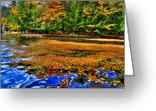 Folage Greeting Cards - Arrowhead Park Waterway in Inlet New York Greeting Card by David Patterson