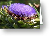 Green Artichoke Greeting Cards - Artichoke Flower  Greeting Card by Saija  Lehtonen