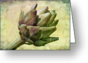 Bud Greeting Cards - Artichoke Greeting Card by Susan Isakson