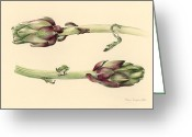 Green Artichoke Greeting Cards - Artichokes Greeting Card by Alison Cooper