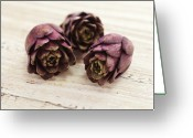 Grain Greeting Cards - Artichokes Greeting Card by James And James